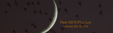 New Moon News, Leo 2014