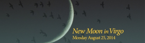 crescent moon, text says New Moon in Virgo, August 25, 2014