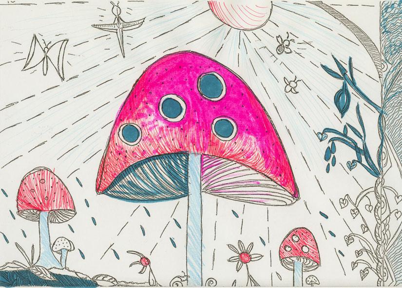 Alahna Waters, mushroom page, © 2017