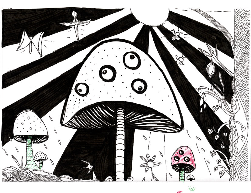 Daniel Pena de Castro Maia, mushroom page, © 2017